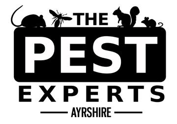 the pest experts ayrshire renfrewshire lanarkshire